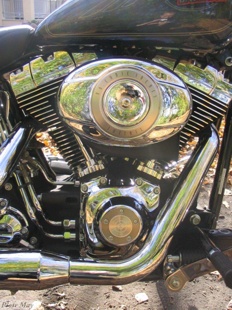 HD Softail Custom 2007 – test motocykla w sześciu aktach