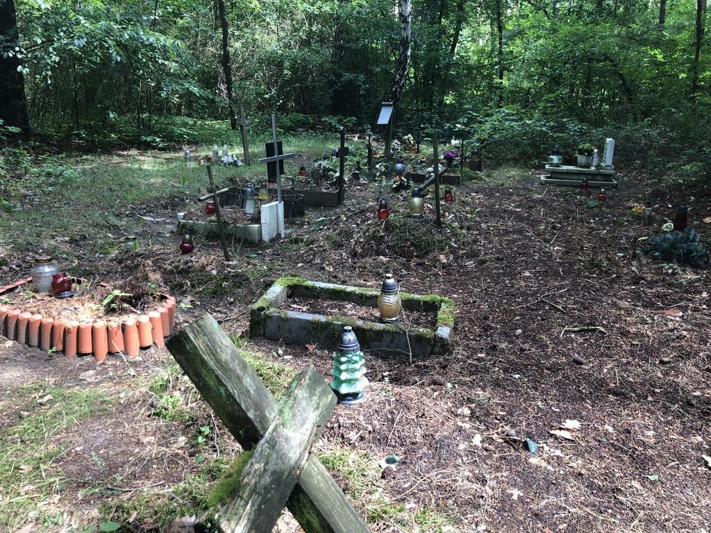 Tajemniczy cmentarz w Poznaniu